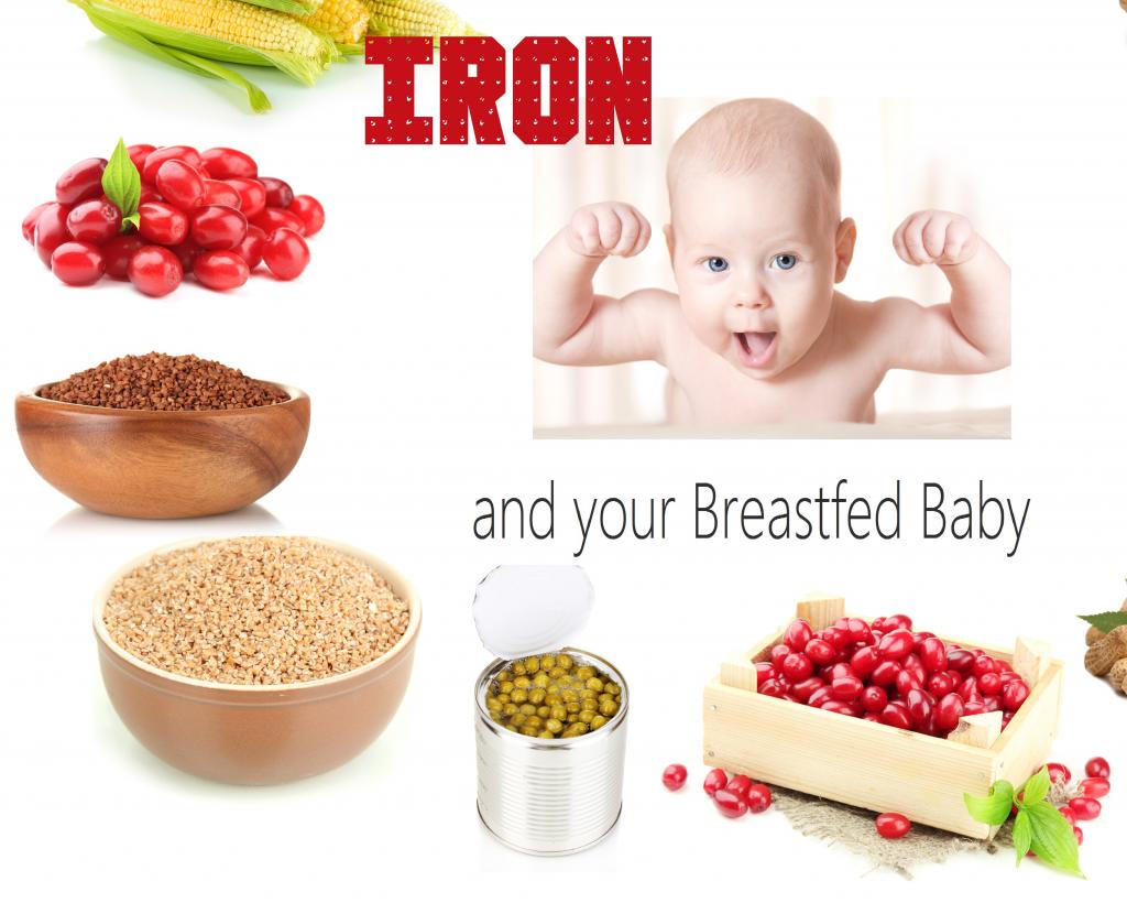 A vueltas con el hierro en el Baby Led Weaning (BLW)