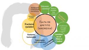 anorexia falta de apetito y sus causas