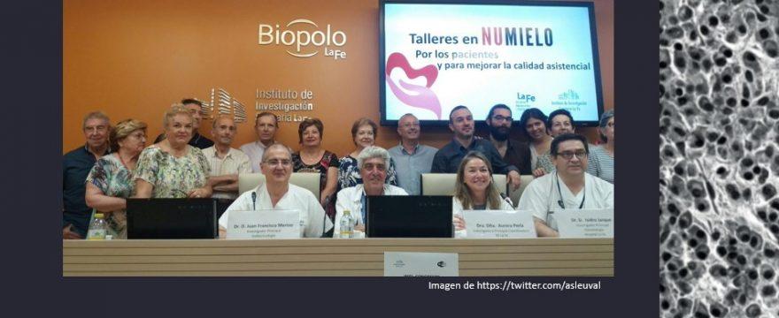 Calidad de vida, estado nutricional y mieloma múltiple: una idea que fue tesis doctoral